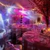 Wedding-6.11.16_a.jpg